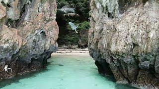 Monkey Beach Ko Phi Phi Island Thailand Phuket 4K Ultra HD 🐒 🇹🇭