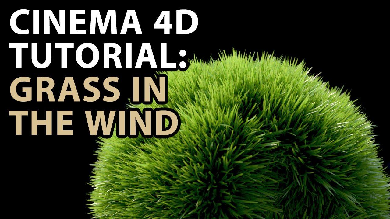 Burning Question: How do I Make Grass in CINEMA 4D? - Toolfarm