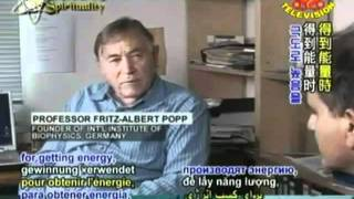 biophotons popp interview part 1 part 2 cannot be found anywhere only the transcript