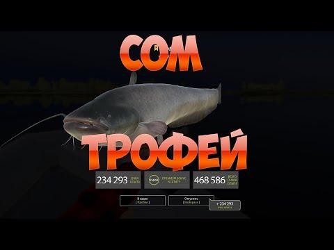 Русская Рыбалка 4: Очередной трофейный сом
