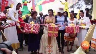 Eyoha Addis Bazaar At Addis Abeba Exhibition Center - እዮሃ አዲስ ባዛር በአዲስ አበባ ኤግዚብሽን ማእከል