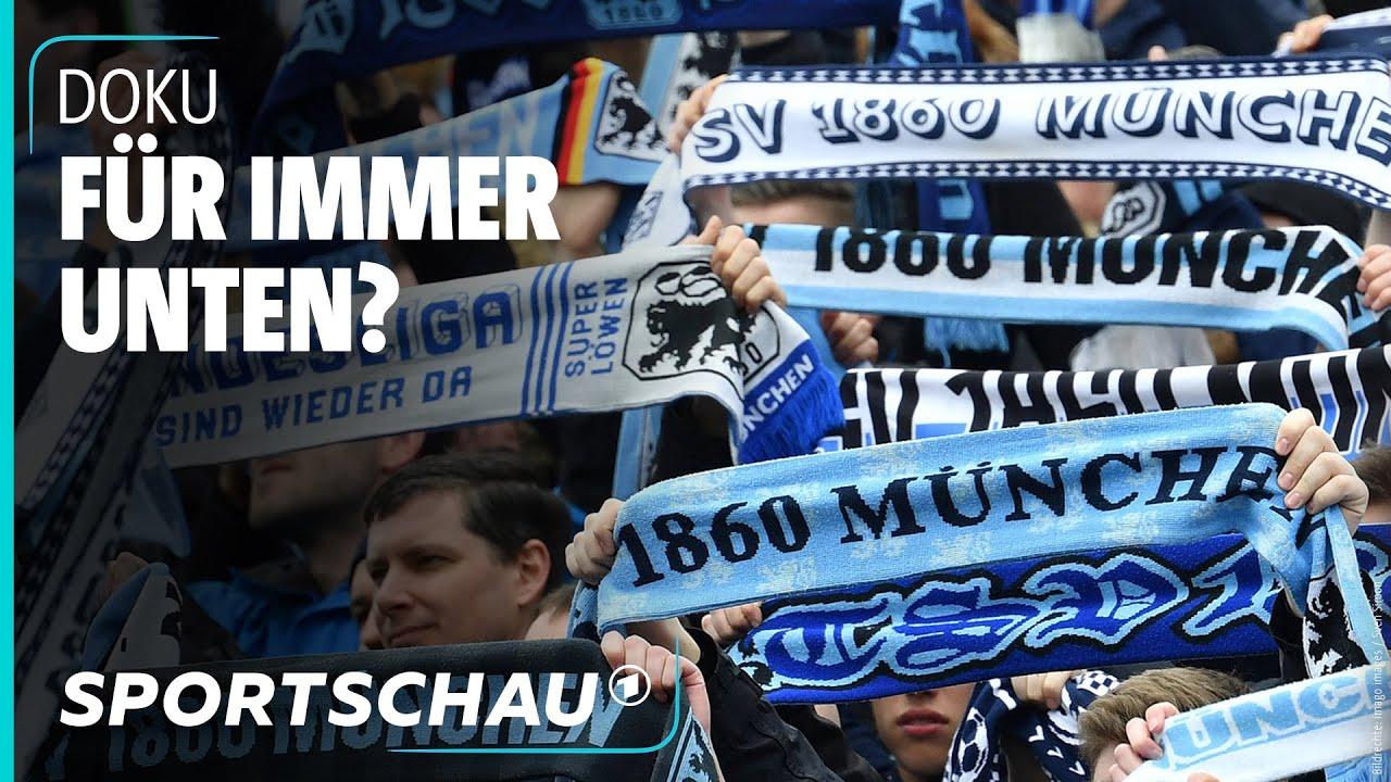 Download Nie mehr erste Liga? Traditionsvereine nach dem Absturz (Teil 1) | Sportschau