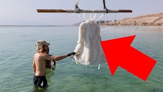 Artist Leaves Dress In The Dead Sea For 2 Years And It Turns Into Something Amazing
