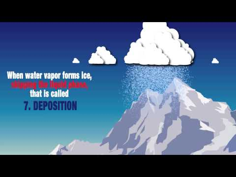The Hydrologic Cycle - Animated Infographic