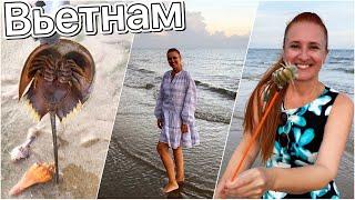 Ловим ФУГУ и морских раков Красота и монстры океана Отдых на пляже Вьетнам влог Люда Изи Кук Vietnam