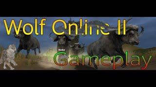 Wolf Online 2  Gameplay  Обзор Игры