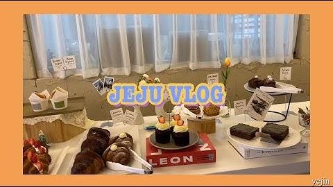 [ jeju vlog ] 12월의 제주도 브이로그| 제주맛집|제주카페