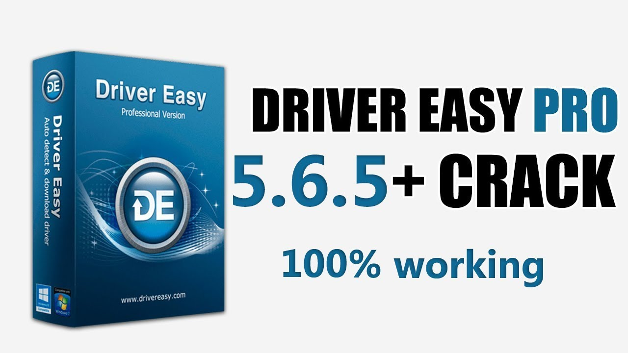 serial para driver easy professional