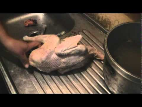 choking-the-chicken---how-to-kill,-defeather,-and-clean-a-chicken
