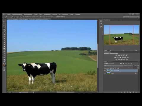 как уменьшить объект на фотографии уроки фотошопа