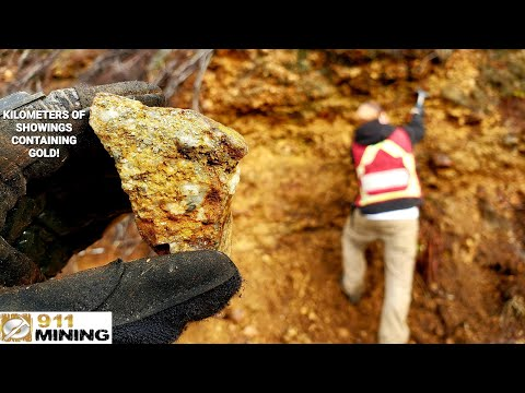 Exploring A Massive Gold Deposit & It's Geology!