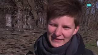 Годовщина Чернобыля: туристы и сериал