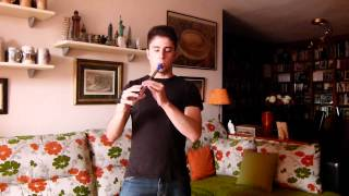 Eluveitie Brictom Cover Tin whistle