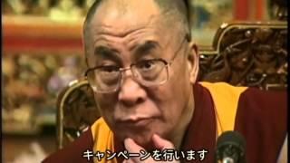国連の友協催 国際平和映画祭2008 in こしの都」より・・・・・ ...