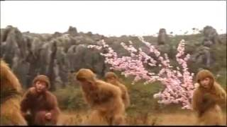 Sun Wukong 2010 - Khmer Dubbed Chinese Movie P01