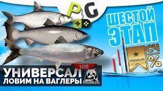 Русская Рыбалка 4 - Стрим Прокачка УНИВЕРСАЛА для 6-го этапа Стрим #15 Ловим на ваглеры