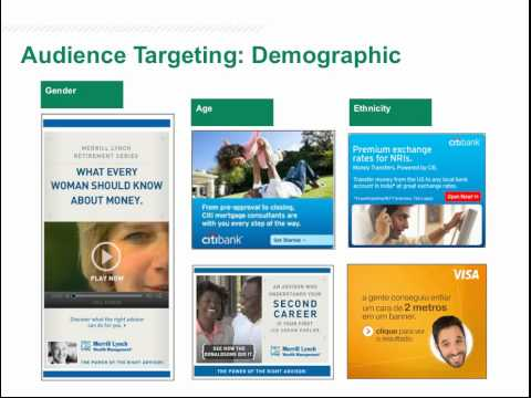Neustar Audience Targeting Solutions & Online Display Advertising for Financial Services Marketers