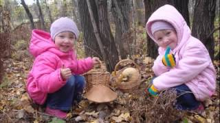 Наступила осень (Детская песенка)