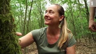 Waldbaden: Heilung mit Baum, Blatt und Borke