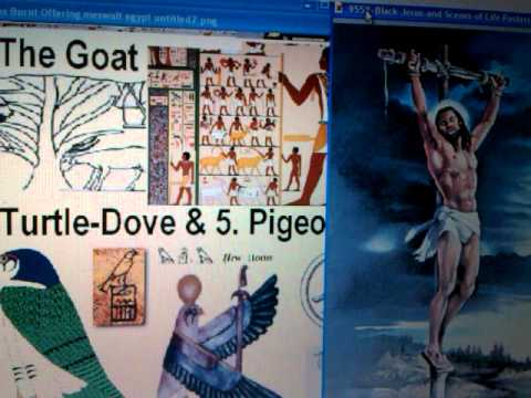 RSS#24.2 RASTAFARI & CHRIST-Messiah's 5 Egypt Types: Bull, Ram, Goat, Dove & Pigeon - Torah Mystery