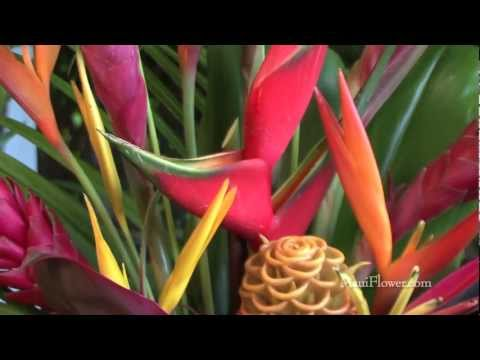 Meet the Maui Flower Growers' Association: American Agriculture at its Most Alluring