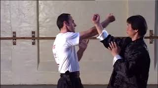 Wing Chun Sil Lim Tao Application step by step guide