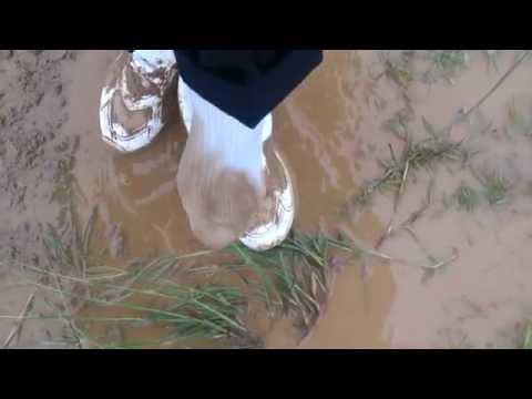 通学靴で泥んこ4-5  Muddy school shoes 4-5