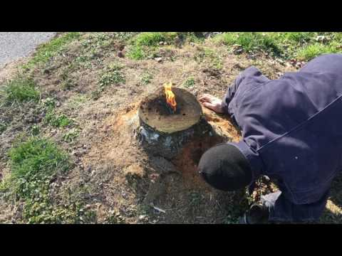 The most amazing way to remove a stump!! E16 from YouTube · Duration:  8 minutes 13 seconds