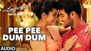 Pee Pee Dum Dum Song || Chuttalabbayi || Aadi, Namitha Pramodh ||  SS Thaman