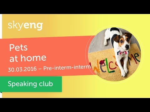 "Разговорный клуб ""Pets"" (Pre-Intermediate, Intermediate)"