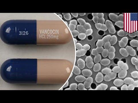 Antibiotic Resistance Bacteria VRE Killed By Modified Antibiotic Vancomycin - TomoNews