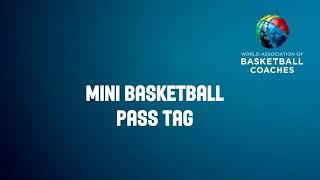 SK pass tag