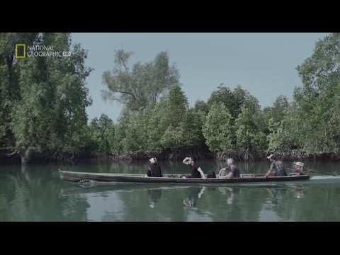 Нацистские тайны Второй мировой-4 Крокодилья бойня НОВЫЙ ФИЛЬМ National Geographic!