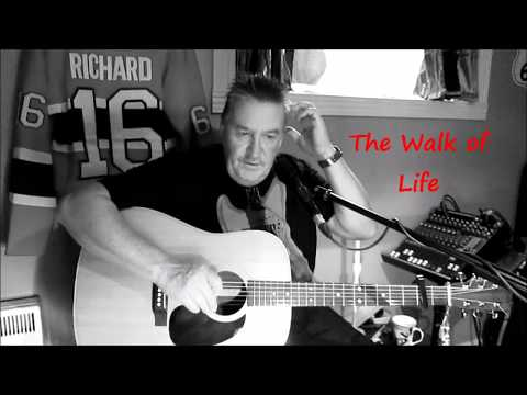 The walk of life  Dire Straits  Cover Richard Harbour (Stoneacoustic)