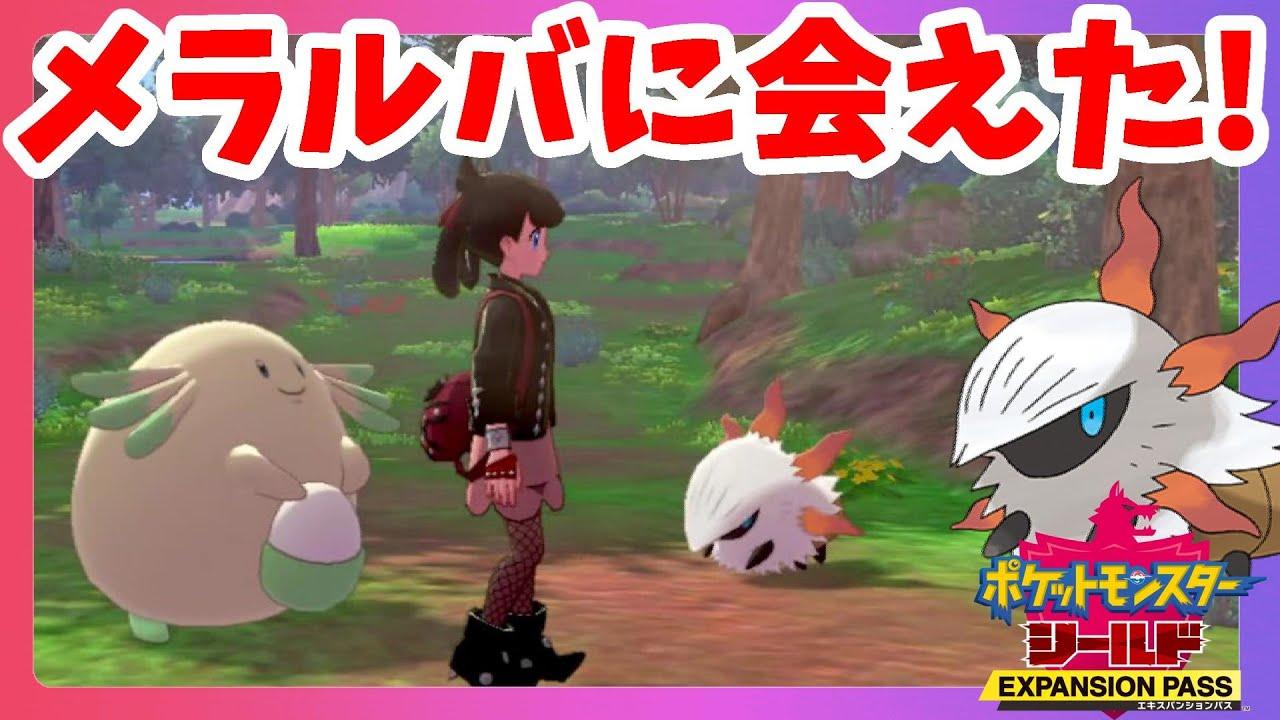【ポケモンソードシールド】やっとメラルバに会えた!色違いハピナス誕生!鎧の孤島【エキスパンションパス第1弾】