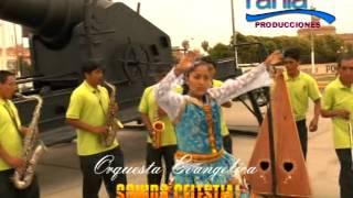 ORQUESTA SONIDO CELESTIAL VL 4 DESDE HUANUCO PERU