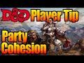D&D Party Composition: Cohesion & Tactics| D&D Player Tips