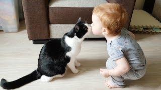赤ちゃんと猫のキスキスキス!お兄ちゃん大好きな赤ちゃん、今日もプーシクに大好きの「チュ!」
