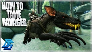 RAVAGER TAME, HOW TO TAME RAVAGER ! - Ark Survival Evolved - Part 5 (Aberration)