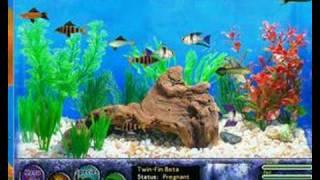 Fish Tycoon species part 1