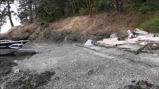 Beach logging