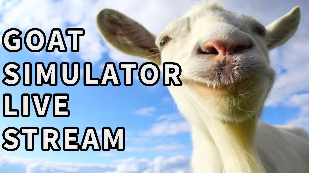 Goat Stream