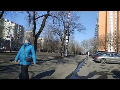 Новочеремушкинская 53А дневной трафик