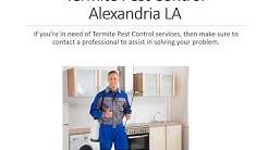 Alexandria Termite Exterminator | Termite Exterminator Service in Alexandria  LA