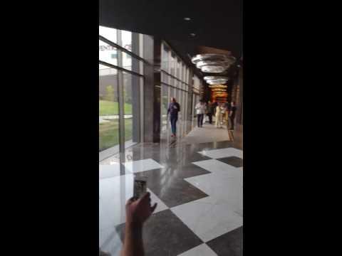 Video Elexus hotel casino spa 5