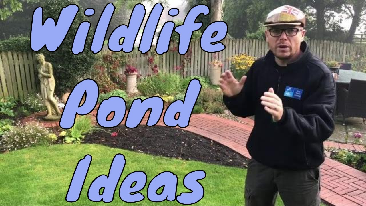 making a small wildlife pond any pond ltd garden pond
