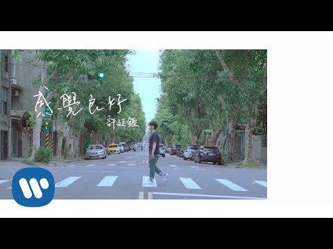 許廷鏗 Alfred Hui - 感覺良好 Good Vibes (Official Music Video)