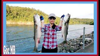 Đi Câu Cá Ở Chổ Mới | Cách Nối Dây, Buộc Chì & Lưỡi Câu Đơn Giản Rất Chắc
