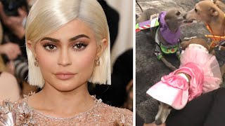 Kylie Jenner Put Her Dogs in Toy Story Costumes and It Is WILD