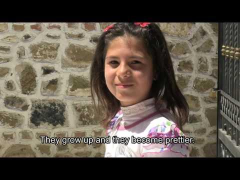 RRUGA: street children in Albania